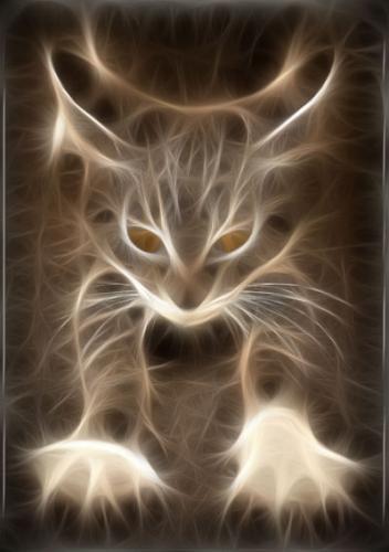 Cat Matrix.jpg (37 KB)