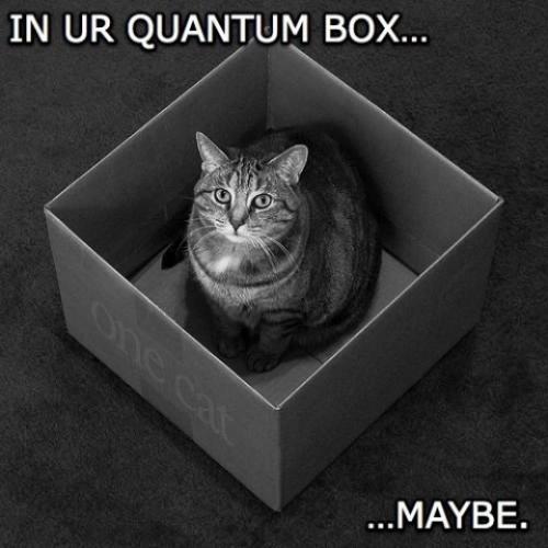 quantumbox.jpg (55 KB)