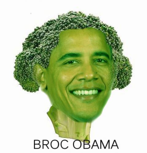 broc.jpg (97 KB)