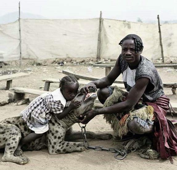 200803_hiena-africa.jpg