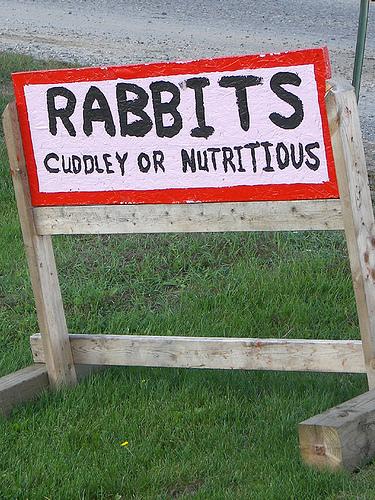 tasty_rabbits.jpg (189 KB)