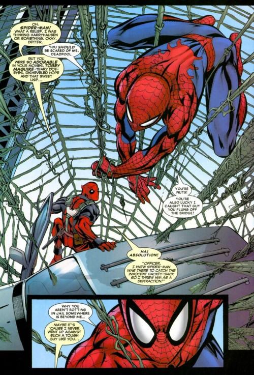 spidey_deadpool_big.jpg (347 KB)