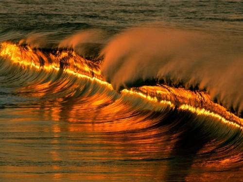 golden-wave-at-sunset.jpg (98 KB)