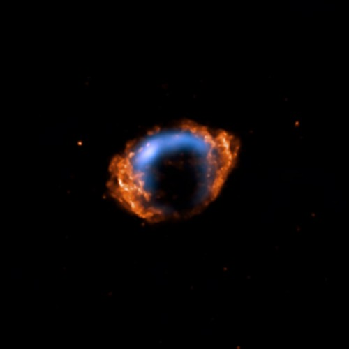 young supernova.jpg (15 KB)
