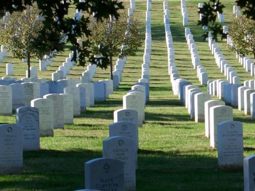 washington_dc_014_arlington_cemetery_headstones_rows_big.jpg (142 KB)