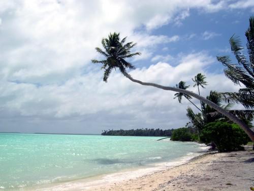 Beach_edited.JPG (506 KB)