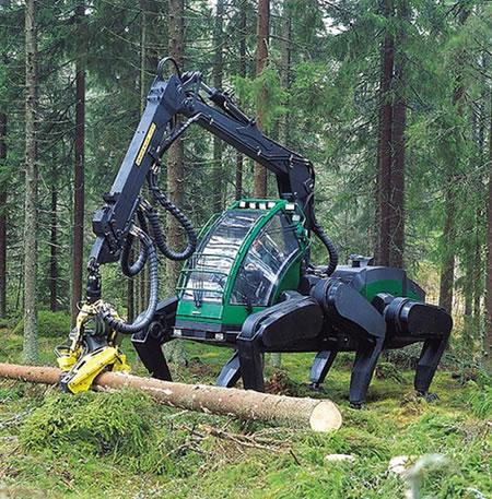logging-spider.jpg (96 KB)