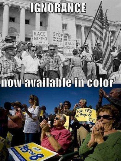 IGNORANCE wtf Racist Politics Humor