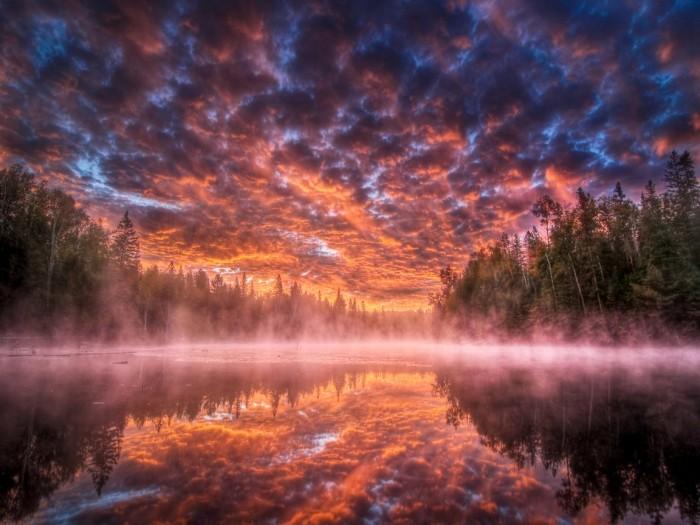 tumblr lr5vldtbBF1qa275vo1 1280 700x525 Woah! Wallpaper Nature