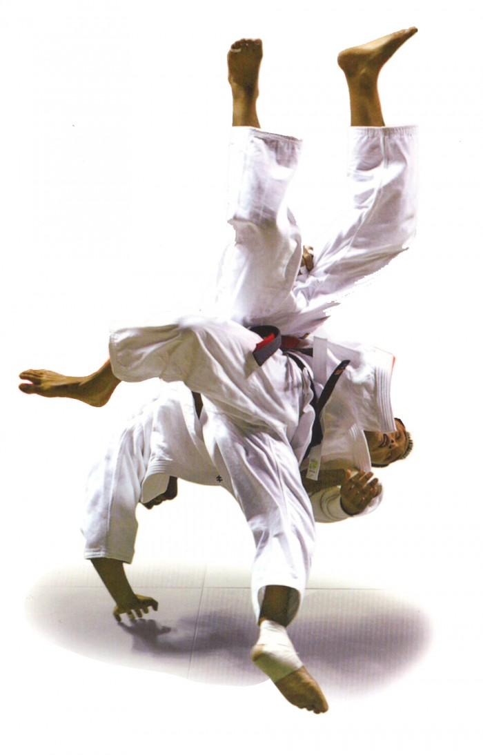 Trowing-in-Judo.jpg (590 KB)