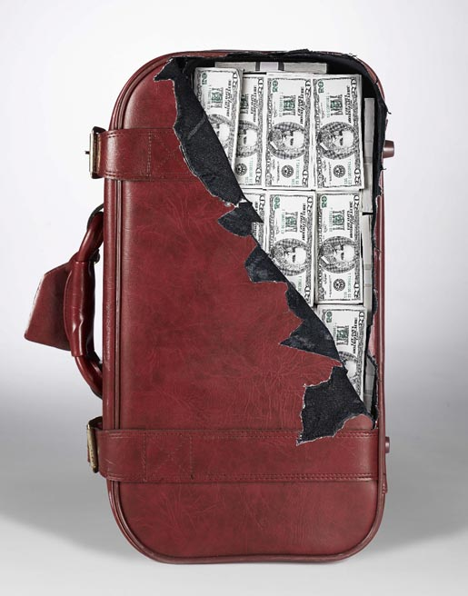 cheeky-suitcase-sticker-money.jpg (68 KB)