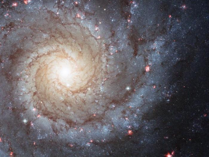 M74.jpg (148 KB)