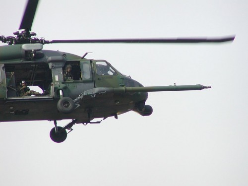Black hawk close.jpg (54 KB)