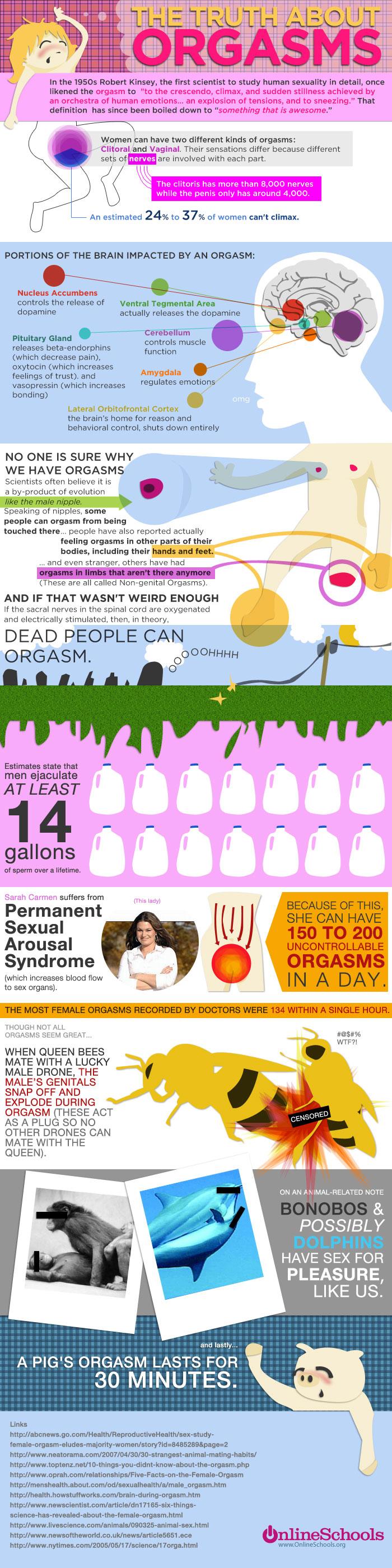 orgasms.jpg (925 KB)