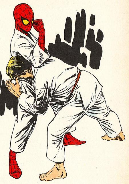 tumblr ltr2ugmkqU1qic19lo1 500 Spiderman Karate wtf spider man Comic Books