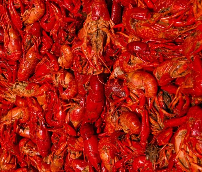 craw 700x596 Crawfish Wallpaper Food
