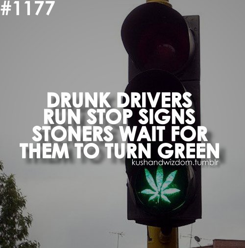 hbgvMA27890381 0004 Drunk drivers vs stoners