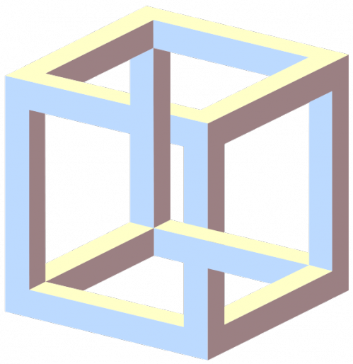 necker cube.png (38 KB)