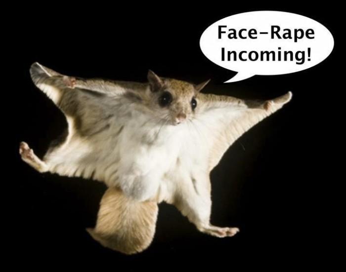 431734 341423792556713 229020663797027 1088418 1873975874 n 700x551 Face Rape Humor forum fodder