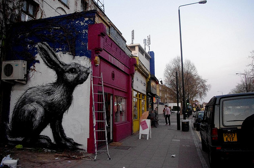 roa london 4525078463 2e304b61e1 Roa Graffiti graffiti Art