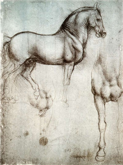 Study_of_horse.jpg (128 KB)
