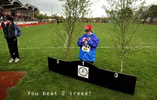 beat2trees 500x321 You Beat 2 Trees! Sad :( Dark Humor