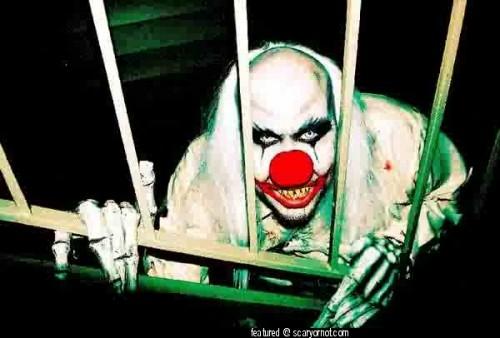 clown13.jpg (47 KB)