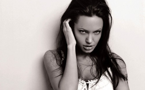 widescreengirls angelinajolie 008 500x312 Desktop Wallpaper Girls 13