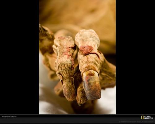 mummy-block-1033638-xl.jpg (297 KB)