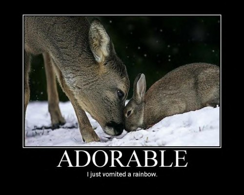 Adorable.jpg (61 KB)