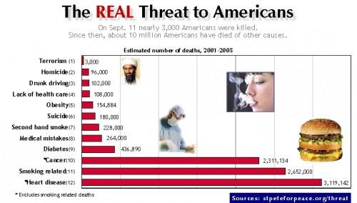 what.kills.americans.july07website2.jpg (122 KB)