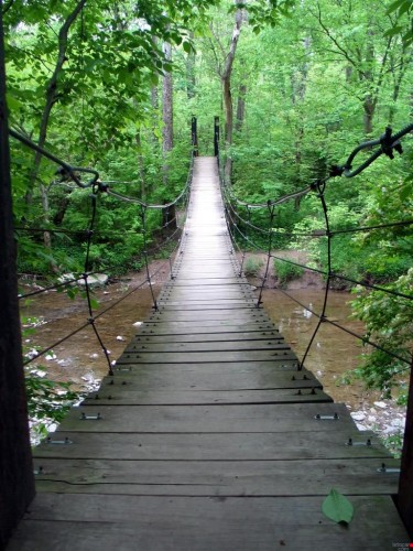bridge.jpg (191 KB)