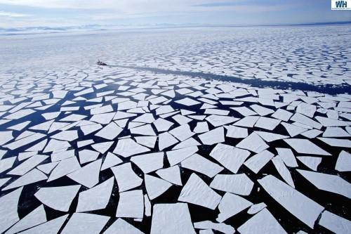 Antarctica.jpg (413 KB)