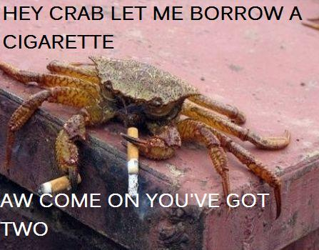 Crab Greedy Chainsmoking Crab Humor