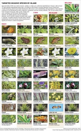 Invasive_Species_Hawaii.jpg (258 KB)