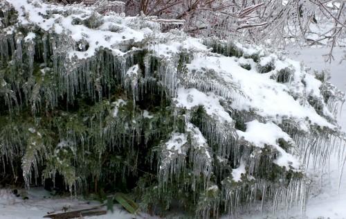 ice1.JPG (360 KB)