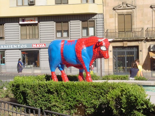 spiderman bull 2.jpg (352 KB)