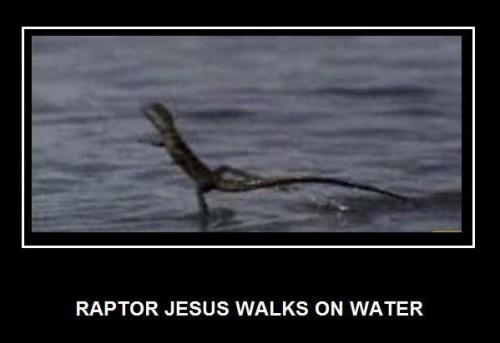 raptor-jesus-walks-on-water.jpg (23 KB)