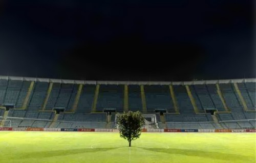 soccertree02.jpg (48 KB)