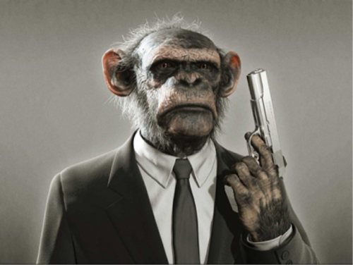 monkey gun6 500x376 Ridiculous Primate Bouncer RPB
