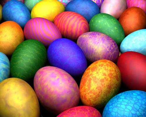 eggs.jpg (645 KB)