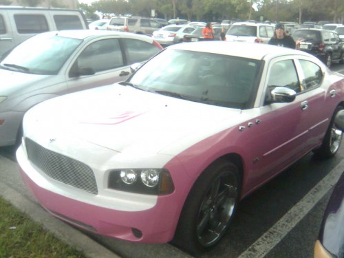 Pink Charger.jpg (81 KB)