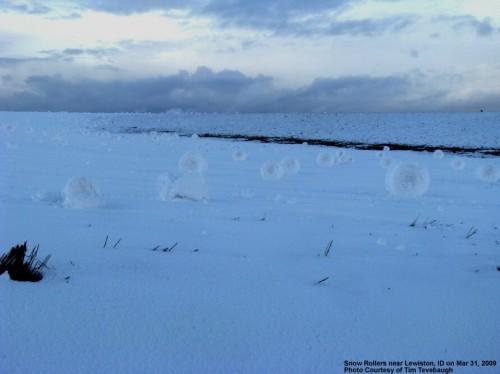 SnowRolls09033105a.jpg (191 KB)
