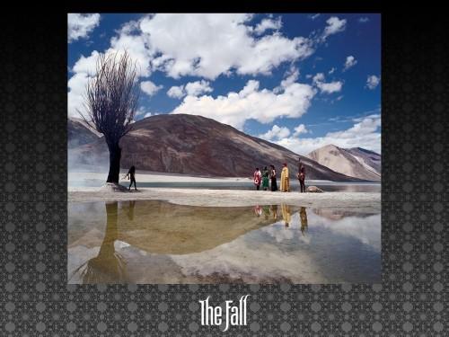 the_fall_7.jpg (223 KB)