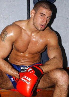 Boxer1.jpg (27 KB)