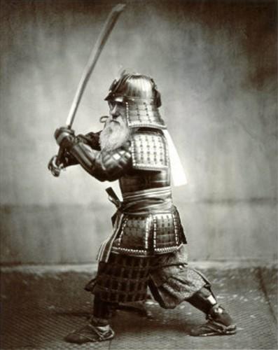 Samurai Darwin