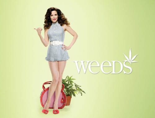 weeds4 wall v3 1280x1024 500x380 Weeds Television Sexy 420