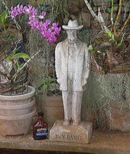 P7041571.57 421x500 Jack loves Orchids Alcohol