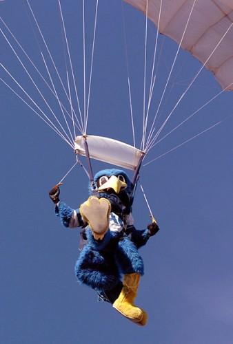 405px AFA The Bird chute 338x500 Parachuting Mascot Sports Military