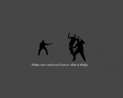 ninja.jpg (38 KB)